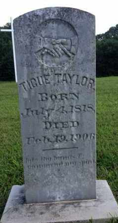 TAYLOR, TIGUE - Henderson County, Tennessee | TIGUE TAYLOR - Tennessee Gravestone Photos