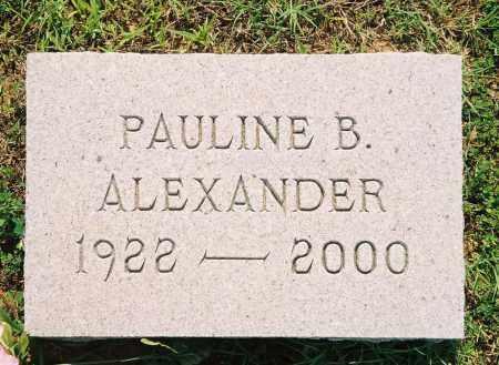 ALEXANDER, PAULINE - Henry County, Tennessee | PAULINE ALEXANDER - Tennessee Gravestone Photos