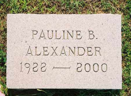 ALEXANDER, PAULINE - Henry County, Tennessee | PAULINE ALEXANDER - Tennessee Gravestone Photos