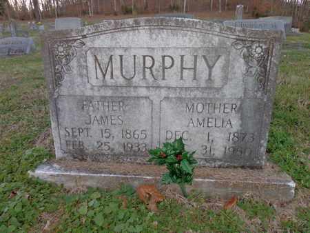 MURPHY, JAMES - Hickman County, Tennessee | JAMES MURPHY - Tennessee Gravestone Photos