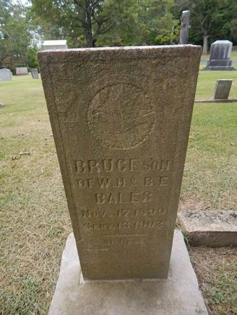 BALES, BRUCE - Jefferson County, Tennessee   BRUCE BALES - Tennessee Gravestone Photos