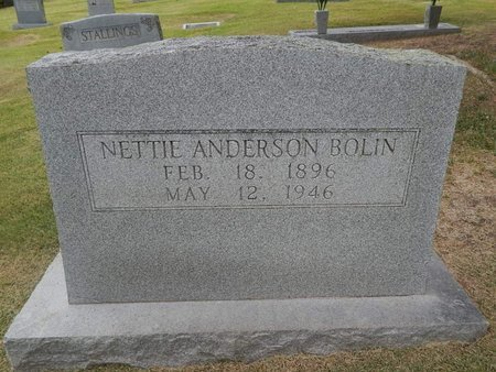 ANDERSON BOLIN, NETTIE - Jefferson County, Tennessee | NETTIE ANDERSON BOLIN - Tennessee Gravestone Photos