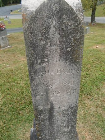 BYOUS, ELISHA - Jefferson County, Tennessee | ELISHA BYOUS - Tennessee Gravestone Photos