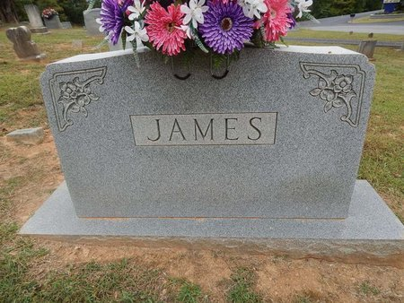 JAMES, FAMILY MARKER - Jefferson County, Tennessee | FAMILY MARKER JAMES - Tennessee Gravestone Photos