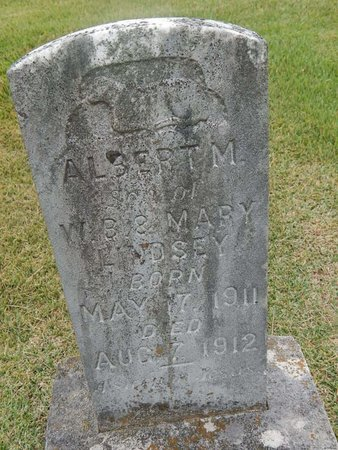 LINDSEY, ALBERT M - Jefferson County, Tennessee | ALBERT M LINDSEY - Tennessee Gravestone Photos