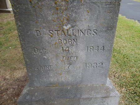 STALLINGS, DALTON (CLOSE-UP) - Jefferson County, Tennessee | DALTON (CLOSE-UP) STALLINGS - Tennessee Gravestone Photos
