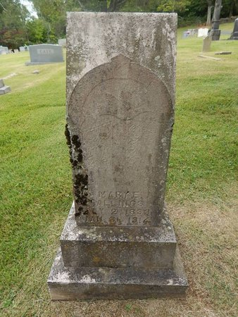 STALLINGS, MARY E - Jefferson County, Tennessee | MARY E STALLINGS - Tennessee Gravestone Photos