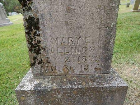 STALLINGS, MARY E (CLOSE-UP) - Jefferson County, Tennessee   MARY E (CLOSE-UP) STALLINGS - Tennessee Gravestone Photos