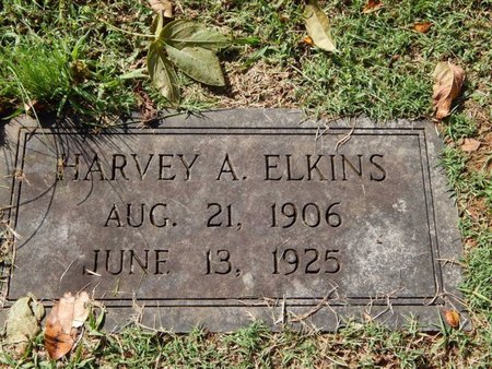 ELKINS, HARVEY A - Knox County, Tennessee | HARVEY A ELKINS - Tennessee Gravestone Photos