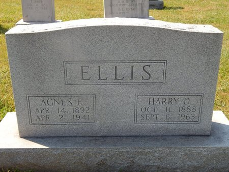 ELLIS, HARRY D - Knox County, Tennessee | HARRY D ELLIS - Tennessee Gravestone Photos