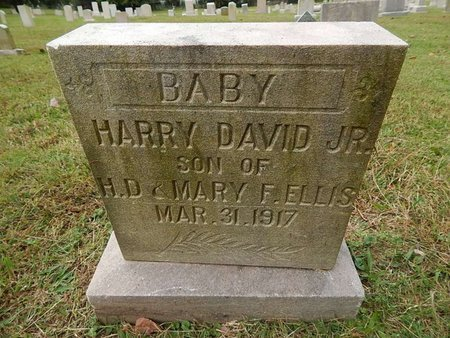 ELLIS, HARRY DAVID JR - Knox County, Tennessee | HARRY DAVID JR ELLIS - Tennessee Gravestone Photos