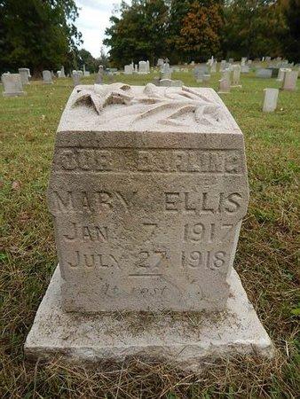ELLIS, MARY - Knox County, Tennessee   MARY ELLIS - Tennessee Gravestone Photos