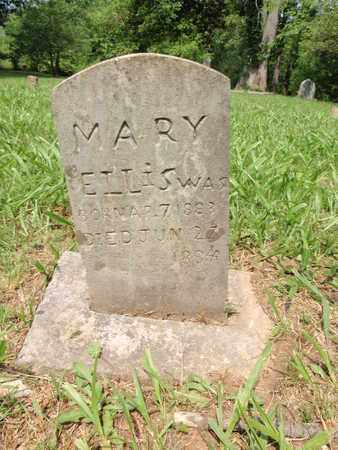 ELLIS, MARY - Knox County, Tennessee | MARY ELLIS - Tennessee Gravestone Photos