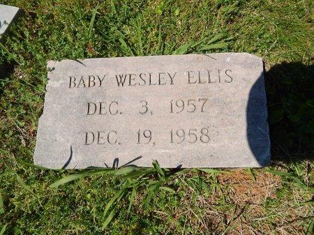 ELLIS, WESLEY - Knox County, Tennessee | WESLEY ELLIS - Tennessee Gravestone Photos