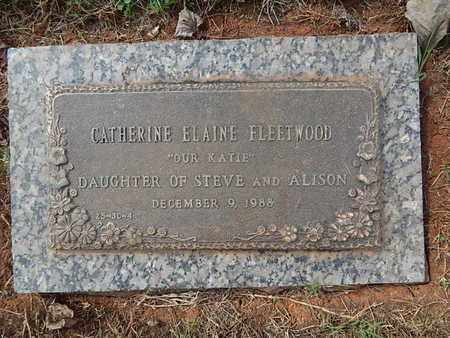 FLEETWOOD, CATHERINE ELAINE - Knox County, Tennessee | CATHERINE ELAINE FLEETWOOD - Tennessee Gravestone Photos