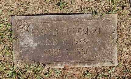 FREEMAN, FLOYD - Knox County, Tennessee | FLOYD FREEMAN - Tennessee Gravestone Photos