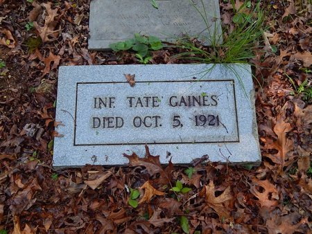 GAINES, TATE - Knox County, Tennessee | TATE GAINES - Tennessee Gravestone Photos
