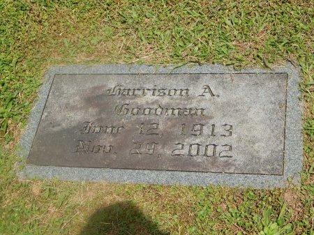 GOODMAN, HARRISON A - Knox County, Tennessee | HARRISON A GOODMAN - Tennessee Gravestone Photos