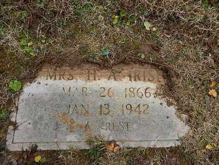 HAYES IRISH, ELIZABETH G - Knox County, Tennessee | ELIZABETH G HAYES IRISH - Tennessee Gravestone Photos