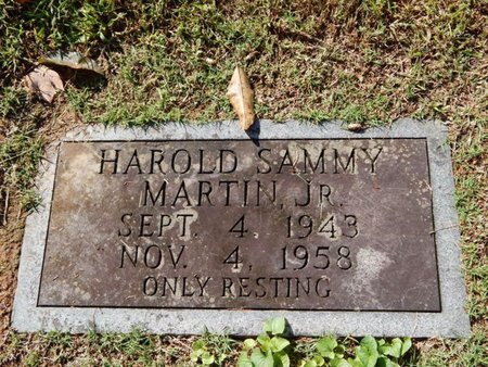 MARTIN, HAROLD SAMMY JR - Knox County, Tennessee | HAROLD SAMMY JR MARTIN - Tennessee Gravestone Photos