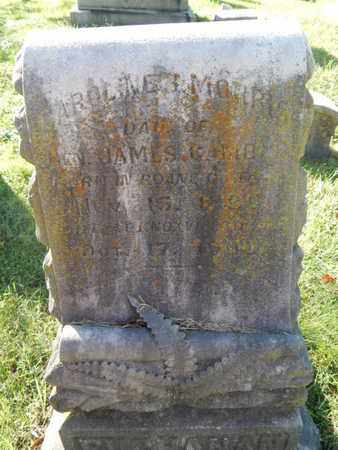 MORRIS, CAROLINE - Knox County, Tennessee | CAROLINE MORRIS - Tennessee Gravestone Photos