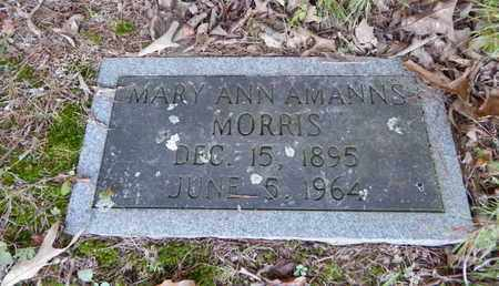 MORRIS, MARY ANN - Knox County, Tennessee | MARY ANN MORRIS - Tennessee Gravestone Photos