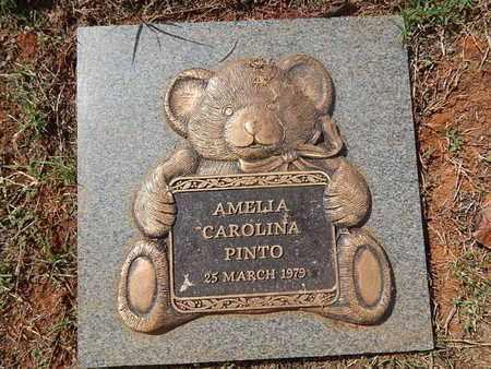 PINTO, AMELIA CAROLINA - Knox County, Tennessee   AMELIA CAROLINA PINTO - Tennessee Gravestone Photos