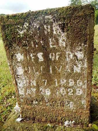 SULLIVAN, QUEEN - Knox County, Tennessee   QUEEN SULLIVAN - Tennessee Gravestone Photos