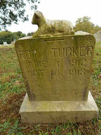 TUCKER, ROY - Knox County, Tennessee | ROY TUCKER - Tennessee Gravestone Photos