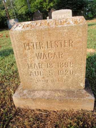 WAGAR, PETER LESTER - Knox County, Tennessee | PETER LESTER WAGAR - Tennessee Gravestone Photos