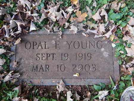 YOUNG, OPAL F - Knox County, Tennessee | OPAL F YOUNG - Tennessee Gravestone Photos