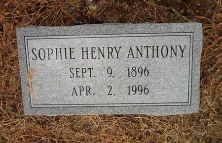 HENY ANTHONY, SOPHIE - Lauderdale County, Tennessee | SOPHIE HENY ANTHONY - Tennessee Gravestone Photos