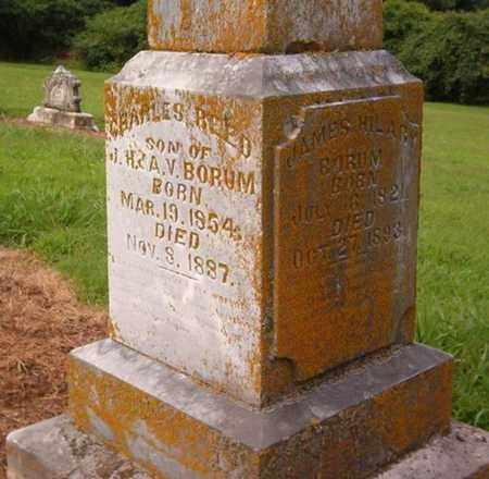 BORUM, JAMES HILARY - Lauderdale County, Tennessee | JAMES HILARY BORUM - Tennessee Gravestone Photos