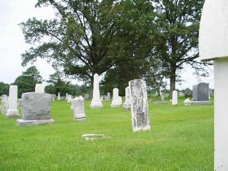 *OVERVIEW,  - Lauderdale County, Tennessee |  *OVERVIEW - Tennessee Gravestone Photos