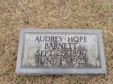 BARNETT, AUDREY HOPE - Lawrence County, Tennessee   AUDREY HOPE BARNETT - Tennessee Gravestone Photos