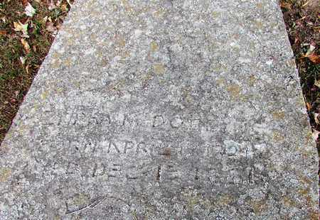 DOBBINS, ZILPHA - Lawrence County, Tennessee | ZILPHA DOBBINS - Tennessee Gravestone Photos