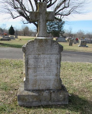 MESTER, ANNA MARY - Lawrence County, Tennessee | ANNA MARY MESTER - Tennessee Gravestone Photos