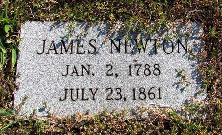 NEWTON, JAMES - Lawrence County, Tennessee | JAMES NEWTON - Tennessee Gravestone Photos