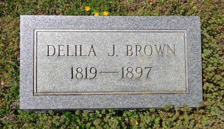 BROWN, DELIA JACKSON - Lewis County, Tennessee | DELIA JACKSON BROWN - Tennessee Gravestone Photos