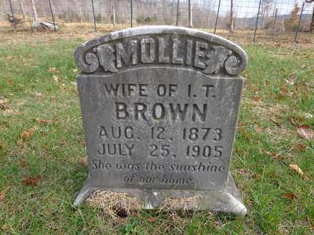 BROWN, MOLLIE - Lewis County, Tennessee | MOLLIE BROWN - Tennessee Gravestone Photos
