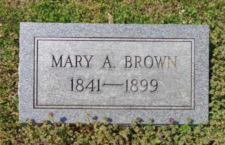 BROWN, MARY ANN - Lewis County, Tennessee | MARY ANN BROWN - Tennessee Gravestone Photos