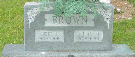 BROWN, LILLIE M. - Lewis County, Tennessee | LILLIE M. BROWN - Tennessee Gravestone Photos
