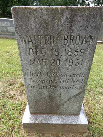 BROWN, WALTER W - Lewis County, Tennessee | WALTER W BROWN - Tennessee Gravestone Photos
