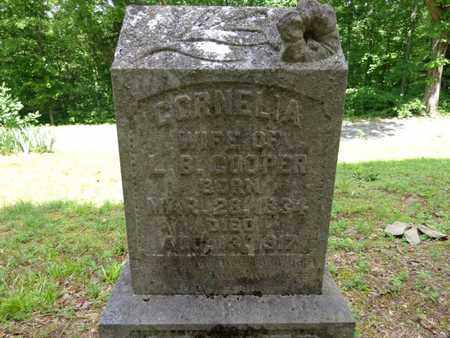 COOPER, CORNELIA - Lewis County, Tennessee | CORNELIA COOPER - Tennessee Gravestone Photos