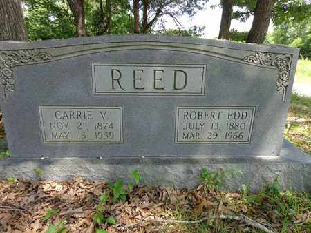 REED, CARRIE V - Lewis County, Tennessee | CARRIE V REED - Tennessee Gravestone Photos