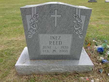 REED, INEZ - Lewis County, Tennessee | INEZ REED - Tennessee Gravestone Photos