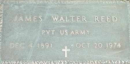 REED, JAMES WALTER - Lewis County, Tennessee | JAMES WALTER REED - Tennessee Gravestone Photos