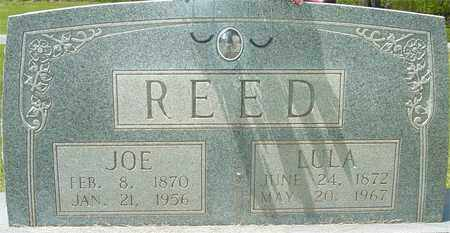 REED, LULA - Lewis County, Tennessee | LULA REED - Tennessee Gravestone Photos
