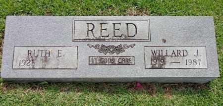REED, WILLARD J - Lewis County, Tennessee | WILLARD J REED - Tennessee Gravestone Photos