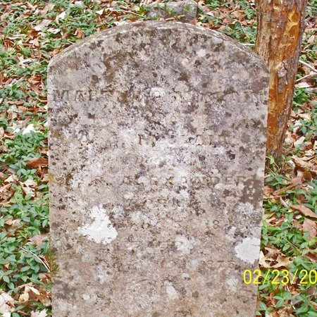 ALEXANDER, MARTHA - Lincoln County, Tennessee | MARTHA ALEXANDER - Tennessee Gravestone Photos
